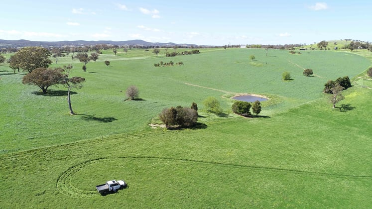 553 Coolalie Road Yass NSW 2582 - Image 5