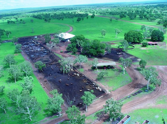 230 Carbeen Road Katherine NT 0850 - Image 2