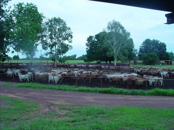 230 Carbeen Road Katherine NT 0850 - Image 5