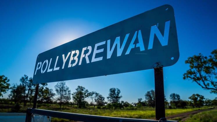 'Pollybrewan', 1858 Gungalman Road Carinda NSW 2831 - Image 1