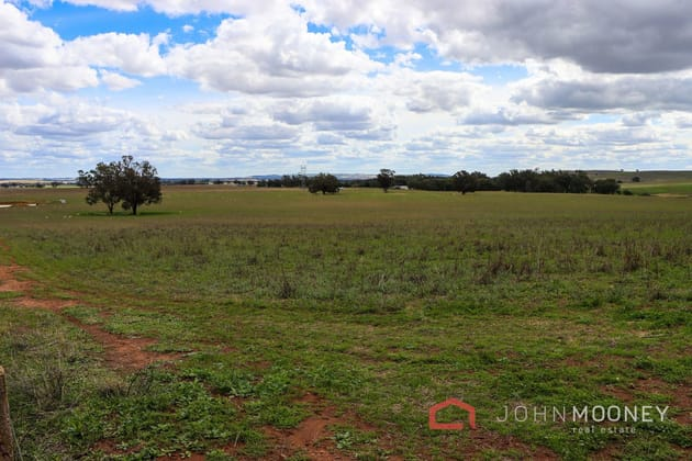 112 Thirteen Mile Reserve Road Maxwell NSW 2650 - Image 5