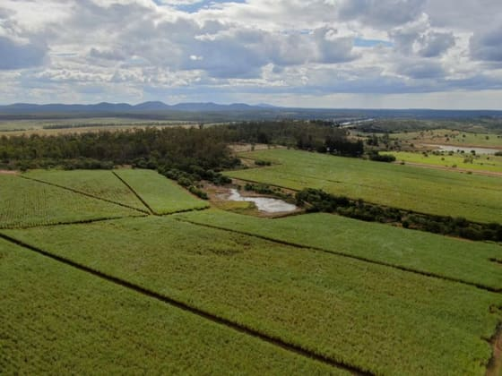 1858 Norbrook Road Bucca QLD 4670 - Image 5