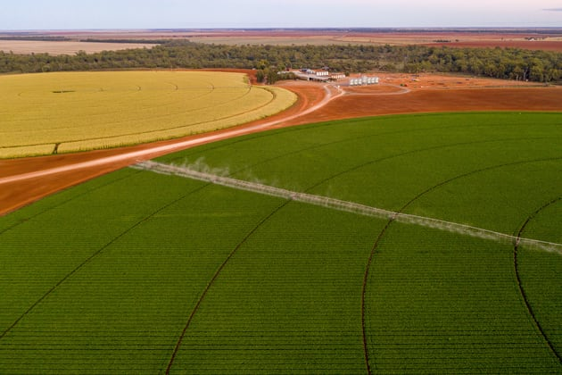 Lachlan River Road Hillston NSW 2675 - Image 1