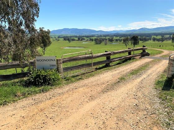 5180 Tooma Road Greg Greg NSW 2642 - Image 3