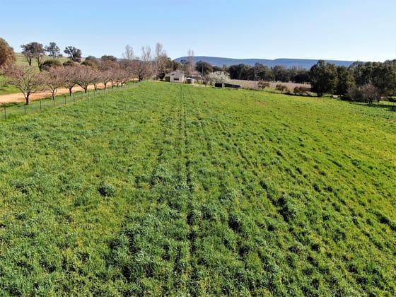 897 Murringo Flats Road Murringo NSW 2586 - Image 5