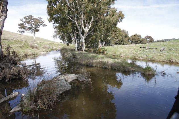 53 Lawrence Lane Yass NSW 2582 - Image 3