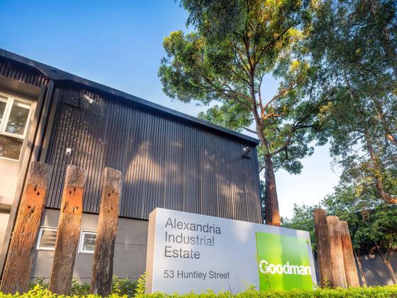 46 - 62 Maddox Street Alexandria NSW 2015 - Image 3