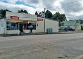Grocery & Alcohol Business in Zeehan