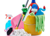 Cleaning Services Business in Blackburn South