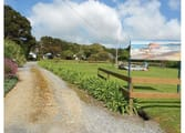 Accommodation & Tourism Business in King Island