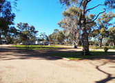 Caravan Park Business in Hay