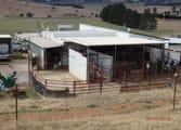 Rural & Farming Business in Port Macquarie