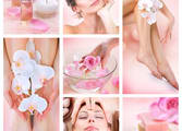 Beauty Salon Business in Essendon