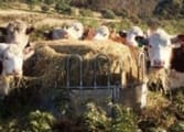 Rural & Farming Business in Horsham