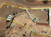 Accommodation & Tourism Business in Coober Pedy