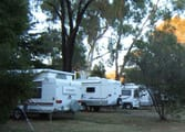 Accommodation & Tourism Business in Coonabarabran