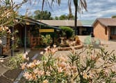Accommodation & Tourism Business in Denman