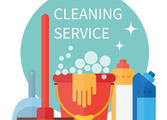 Cleaning Services Business in North Manly