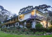 Accommodation & Tourism Business in Bermagui