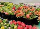 Garden & Household Business in Melbourne