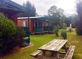 Accommodation & Tourism Business in Nelson