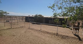 Rural / Farming commercial property sold at 97 Rose Street Blackall QLD 4472