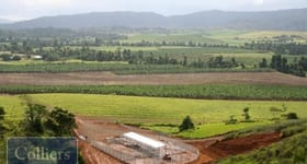 Rural / Farming commercial property for sale at * Boolabah Road Camp Creek QLD 4871