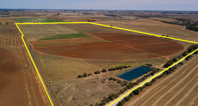 Rural / Farming commercial property for sale at Lot 1 Whitelaw Road Ward Belt SA 5118