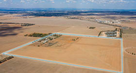 Rural / Farming commercial property for sale at 81 Wasley Road Two Wells SA 5501