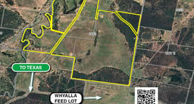 Rural / Farming commercial property for sale at 1683 Beebo Seventeen Mile Road Beebo QLD 4385
