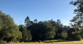 Development / Land commercial property for sale at 186 Gold Coast Springbrook Road Mudgeeraba QLD 4213
