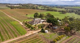 Rural / Farming commercial property for sale at 130 Heinze Road Seppeltsfield SA 5355