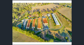 Rural / Farming commercial property for lease at 285 Finns  Road Menangle NSW 2568