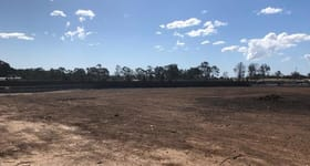 Factory, Warehouse & Industrial commercial property for lease at Leppington NSW 2179