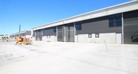 Factory, Warehouse & Industrial commercial property for lease at 50 - 62a Cosgrove Road Strathfield South NSW 2136