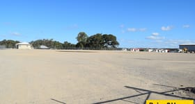 Development / Land commercial property for lease at 39 Sandmere Road Pinkenba QLD 4008