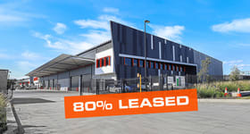 Showrooms / Bulky Goods commercial property for lease at 19 Holbeche Road Arndell Park NSW 2148