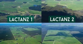 Rural / Farming commercial property sold at Lactanz/Dairies South-West Western Australia Scott River East WA 6275