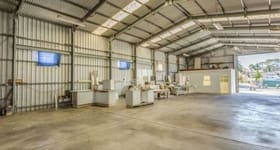 Factory, Warehouse & Industrial commercial property sold at 19 Petrova Avenue Windsor Gardens SA 5087