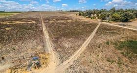 Rural / Farming commercial property sold at 42 Delich Road Carabooda WA 6033