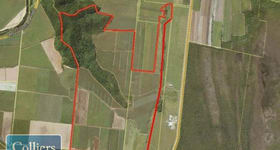 Rural / Farming commercial property for sale at * Stephenson Road Kurrimine Beach QLD 4871