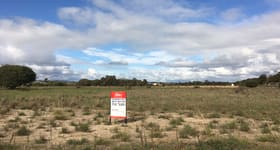 Factory, Warehouse & Industrial commercial property sold at 23 Hardisty Court Picton East WA 6229