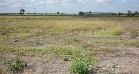 Rural / Farming commercial property for sale at 3 Lena Road Mount Kelly QLD 4807