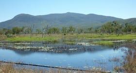 Rural / Farming commercial property for sale at 1905 Woodstock  Giru  Road Majors Creek QLD 4816