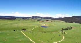 Rural / Farming commercial property sold at Elizabeth Town TAS 7304