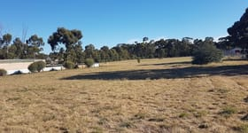 Shop & Retail commercial property for sale at 4215 Pyrenees HWY Flagstaff VIC 3465