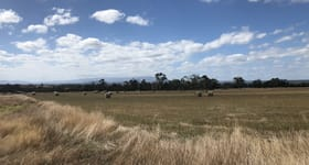Development / Land commercial property sold at 240 Waterloo Rd Moe VIC 3825