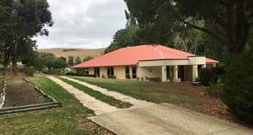 Rural / Farming commercial property for sale at Via Mawson Road Meadows SA 5201