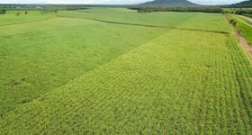 Rural / Farming commercial property for sale at Coastal Farms Tully QLD 4854