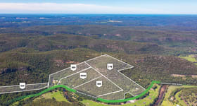 Rural / Farming commercial property for sale at 300 Mangrove Creek Road Mangrove Creek NSW 2250
